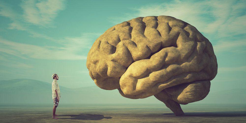 homme_cerveau